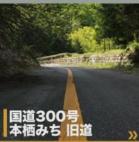 国道300号旧道 本栖みち