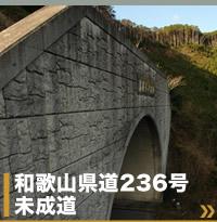 和歌山県道236号未成道岩屋トンネル