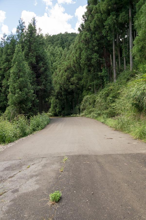 国道162号 廃道 旧道